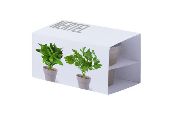 Набор NERTEL: два горшочка для выращивания петрушки и мяты с семенами, биоразлагаемый материал, грун