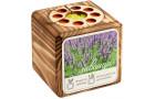 Набор для выращивания с органайзером «Экокуб Burn», лаванда