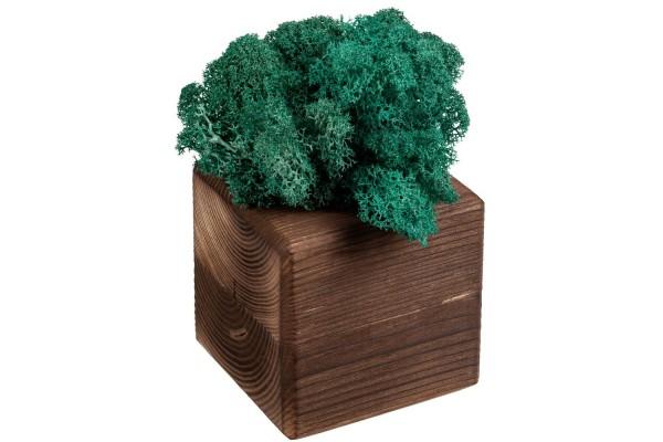 Декоративная композиция GreenBox Fire Cube, бирюзовый