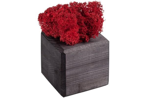 Декоративная композиция GreenBox Black Cube, красный
