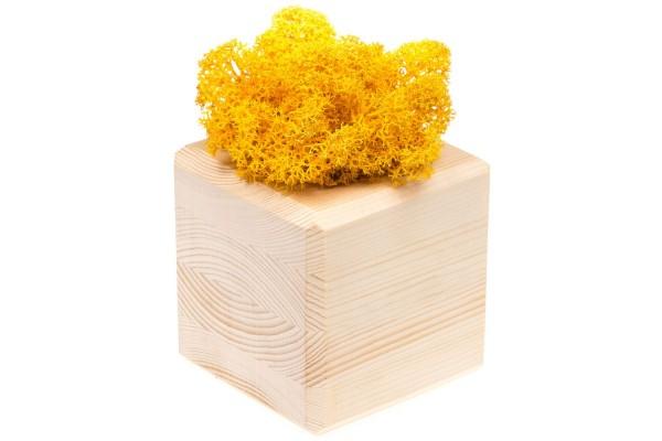 Декоративная композиция GreenBox Wooden Cube, желтый