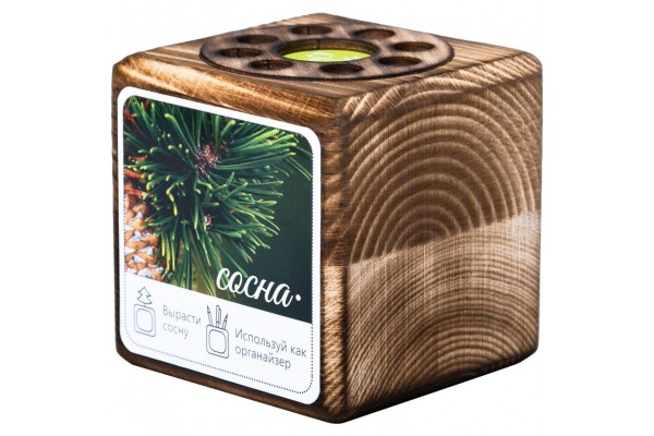 Набор для выращивания с органайзером «Экокуб Burn», сосна