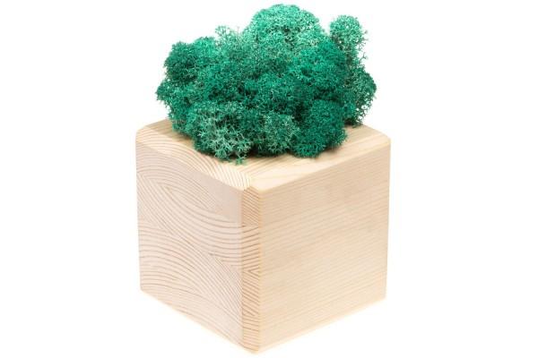 Декоративная композиция GreenBox Wooden Cube, бирюзовый