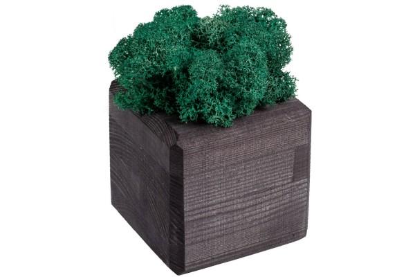 Декоративная композиция GreenBox Black Cube, бирюзовый