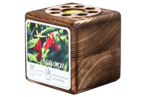 Набор для выращивания с органайзером «Экокуб Burn», годжи