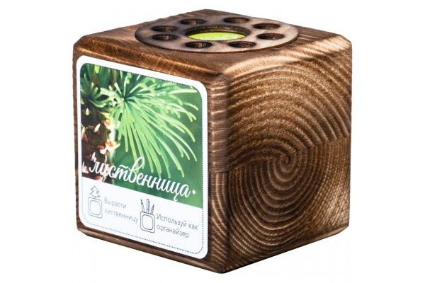 Набор для выращивания с органайзером «Экокуб Burn», лиственница