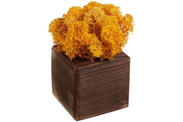 Декоративная композиция GreenBox Fire Cube, желтый