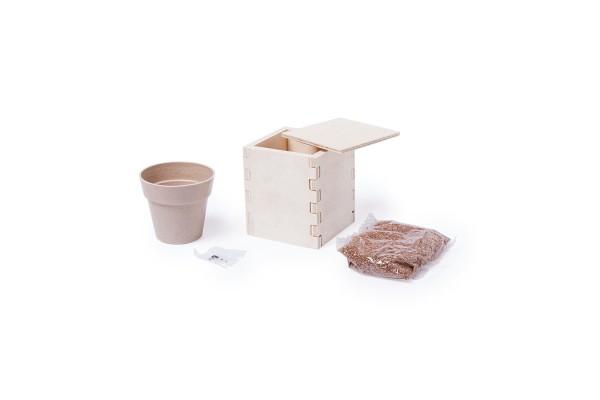 Горшочек для выращивания мяты с семенами (6-8шт) в коробке MERIN, биоразлагаемый материал, дерево, г