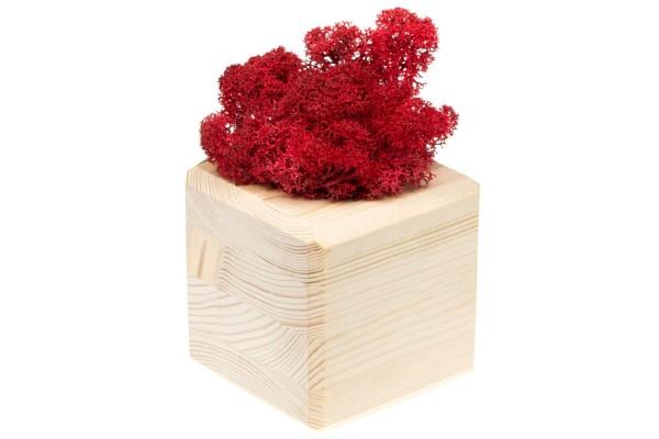 Декоративная композиция GreenBox Wooden Cube, красный
